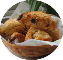 Cranberry and Coconut Scones